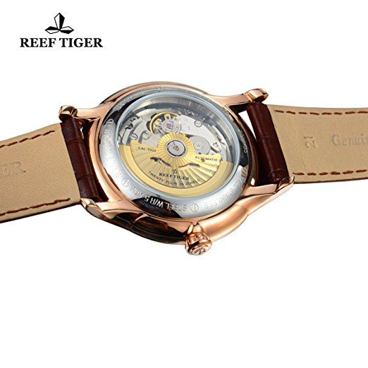 reef tiger rga1639